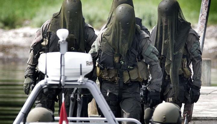 """Операция """"Выкрасть Януковича"""": Киев создает спецназ для действий за границей"""