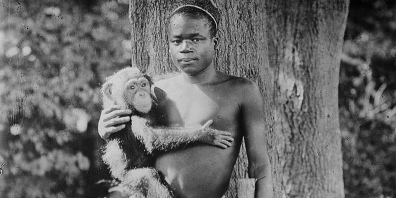 Зоопарк в Бронксе через 114 лет извинился за содержание темнокожего в клетке с обезьянами