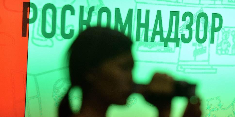 """В Роскомнадзоре задумались над ограничением работы профессиональных """"троллей"""""""