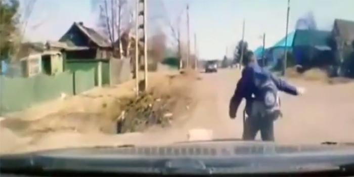 В Красноярском крае водители спасли школьника от огромного алабая
