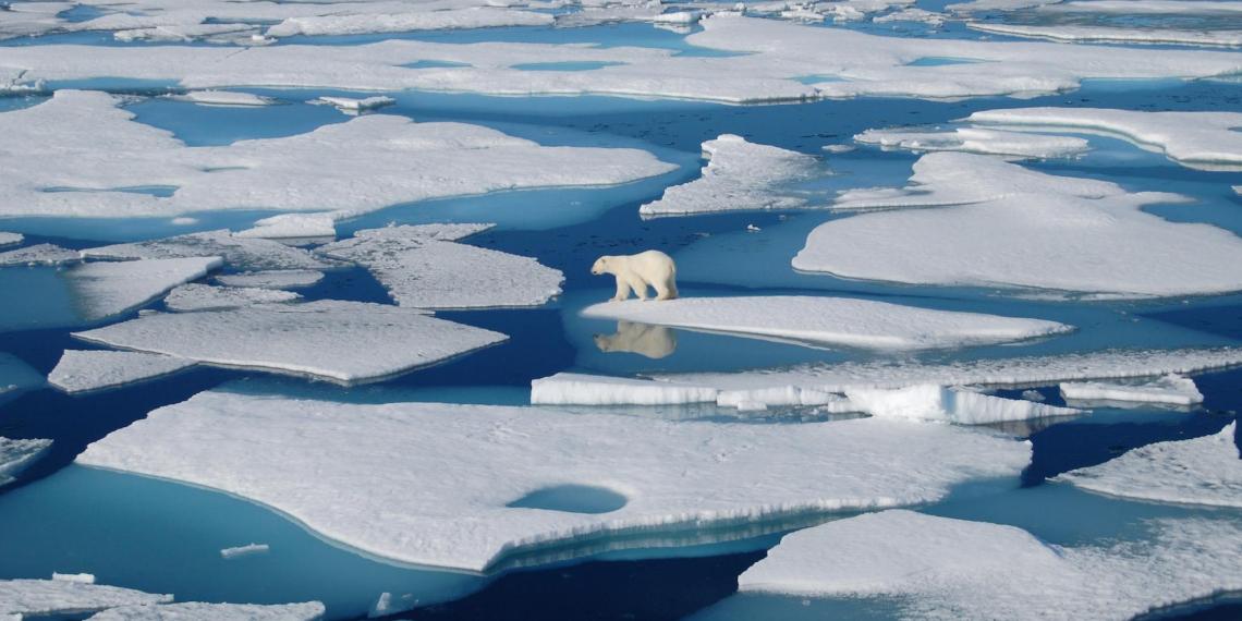 Генштаб: НАТО активизировало деятельность в Арктике