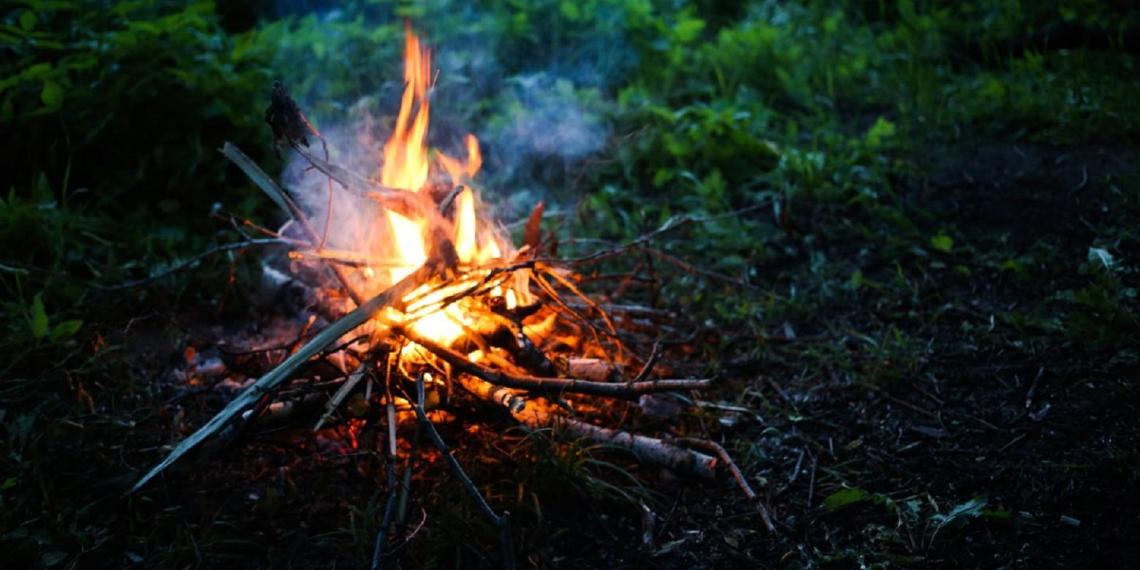 МЧС может разрешить дачникам сжигать мусор на участках