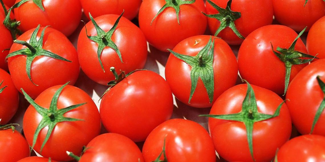 Россия ввела запрет на ввоз перцев и томатов из Казахстана