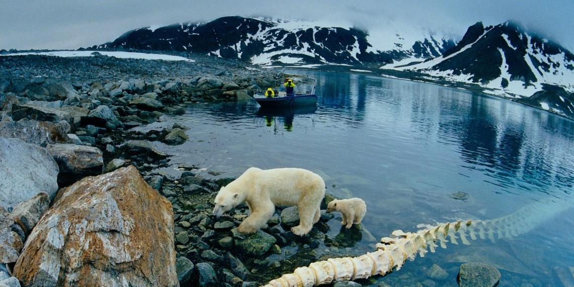 Еще одна страна претендует на ресурсы Арктики