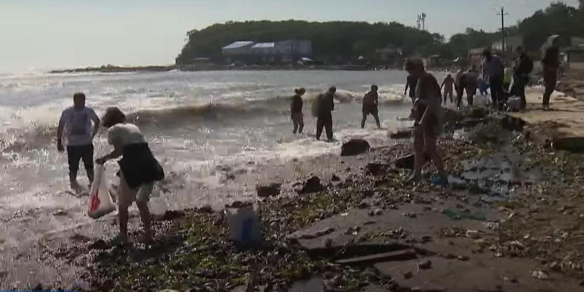 Сильнейший за полвека тайфун подарил жителям Владивостока горы морских деликатесов