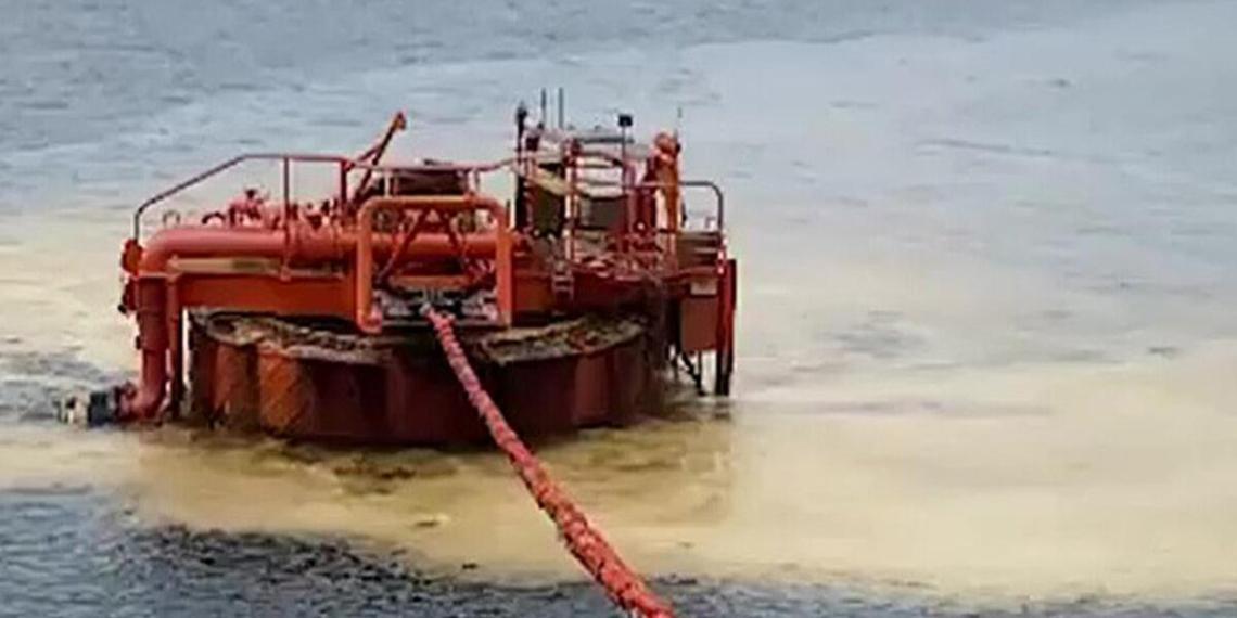 Росприроднадзор оценил ущерб природе от разлива нефти возле Новороссийска