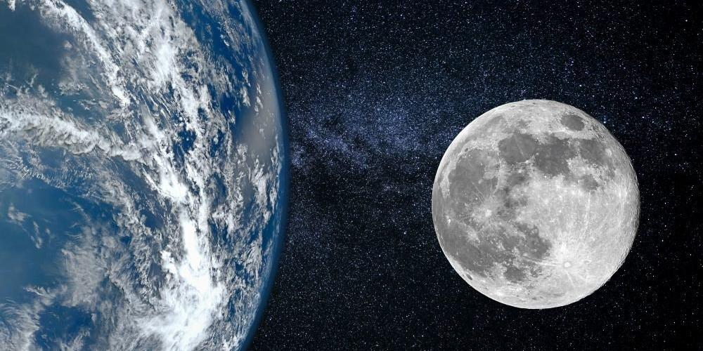 """""""Роскосмос"""" создаст корабль для отправки животных к Луне"""