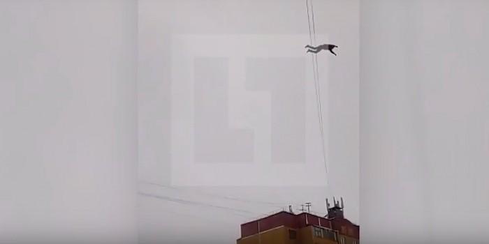 Падение жителя Курска при попытке пройти по проводам сняли на видео