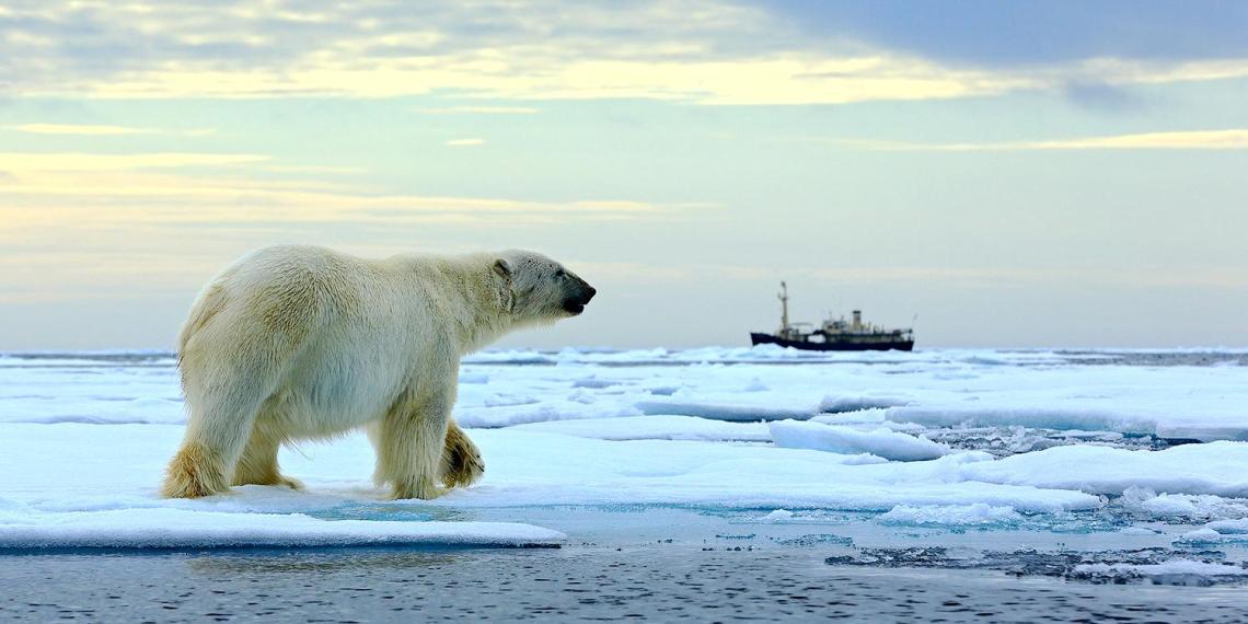 Госдеп увидел в действиях России в Арктике угрозу для линии обороны НАТО