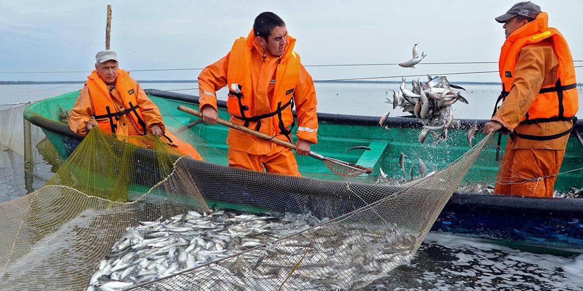 Россия согласилась на требования Китая по рыбе