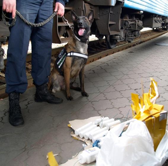 На вокзале Харькова задержаны четверо мужчин со взрывчаткой