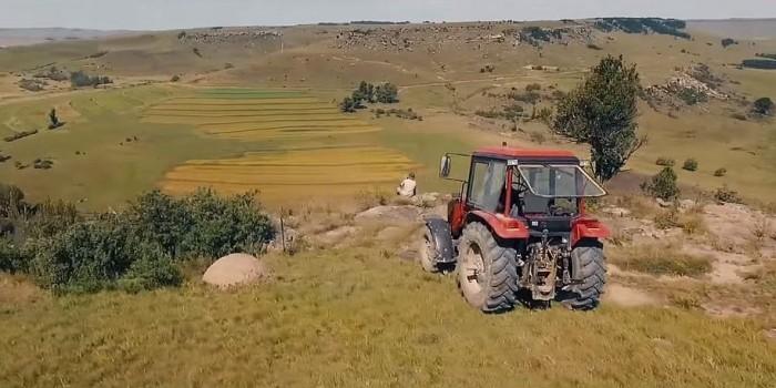 Трогательный рекламный фильм белорусских тракторов выиграл два приза в Каннах