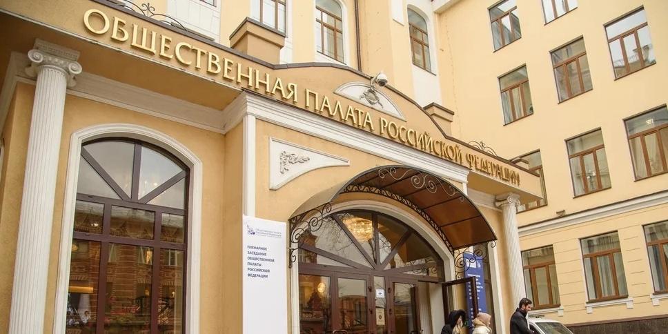 Общественная палата обнаружила в соцсетях более 1,3 тыс. фейков о голосовании по Конституции