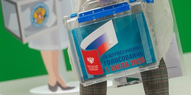 Москвичи смогут проверить систему онлайн-голосования