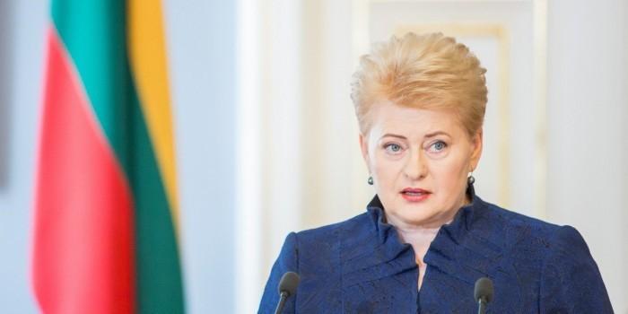 Президент Литвы заподозрила Россию и Белоруссию в подготовке войны с Западом