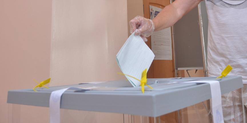 Эксперт ЭИСИ рассказал о методах борьбы с фейками во время голосования по поправкам