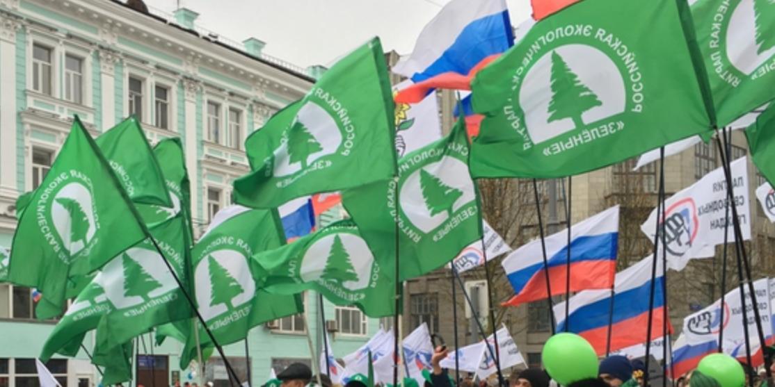 """Партия """"Зеленые"""" рассказала о важных для нее поправках в Конституцию"""